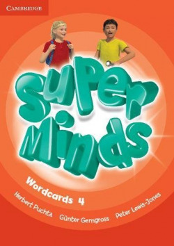 Super Minds Level 4 Wordcards (Pack of 89)