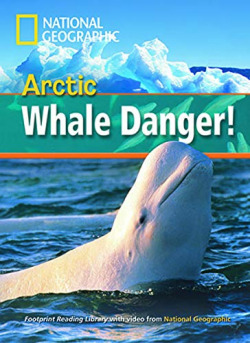 Arctic whale danger! +dvd a2