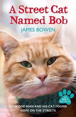 A street cat name bob