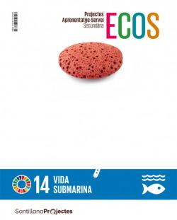 QUAD ACCION VIDA SUBMARINA ECOS CAT ED21