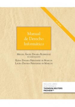 Manual de Derecho Informático (Papel + e-book)