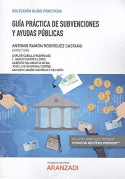 Guía práctica de subvenciones y ayudas públicas