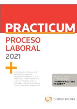 Practicum proceso laboral 2021