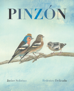 Pinzón