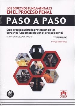 LOS DERECHOS FUNDAMENTALES EN EL PROCESO PENAL.PASO A PASO
