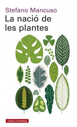 La nació de les plantes