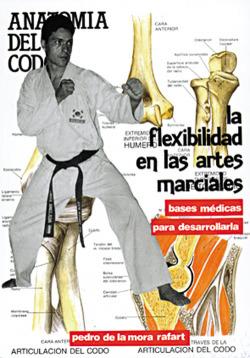 La flexibilidad artes marciales