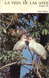 13.La vidas de las aves (Parte II)