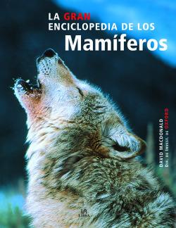 Mamimeros