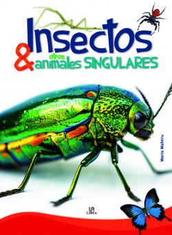 Insectos y otros animales singulares