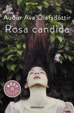 Rosa cándida
