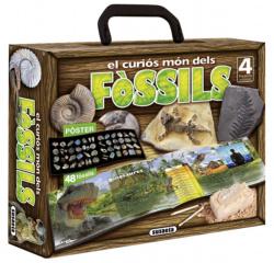 El curios mon dels fossils