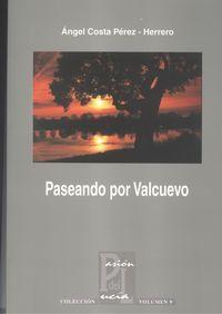 PASEANDO POR VALCUEVO