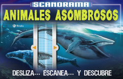 ANIMALES ASOMBROSOS
