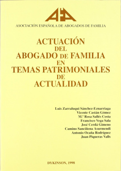 Actuacion del abogado de familia en temas patrimoniales de actualidad