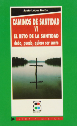 Caminos de santidad VI