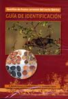 Semillas De Frutos Carnosos Del Norte Ibérico. Guía De Identificación (dvd)