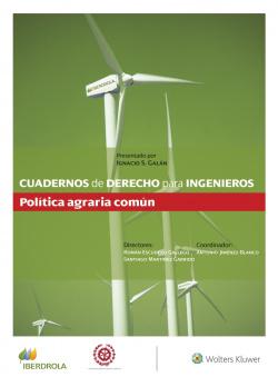 Cuadernos de Derecho para Ingenieros (n.º 51)