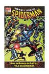 Marvel Team Up 1, Spiderman