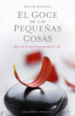 GOCE DE LAS PEQUEÑAS COSAS, EL