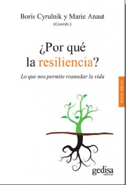 ¿Por que la resiliencia?