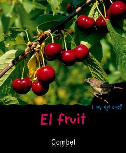 El fruit