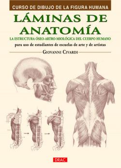 Láminas de anatomía