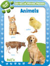 Animals 12-18 mesos